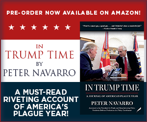 Navarro_Book_300X250